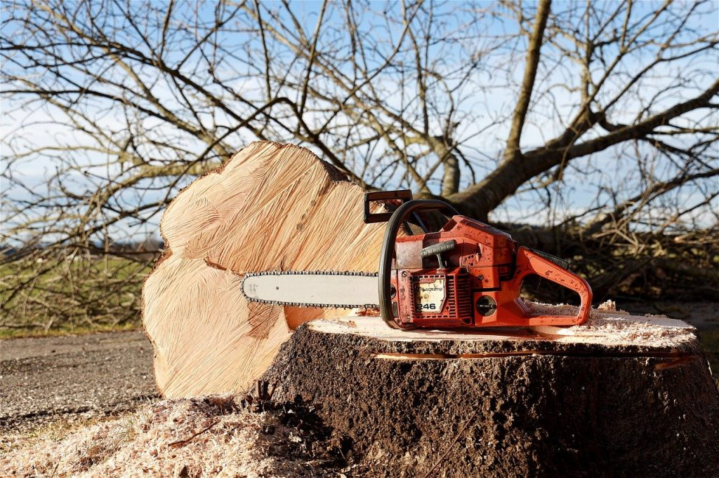 chainsaw 4815949 1280